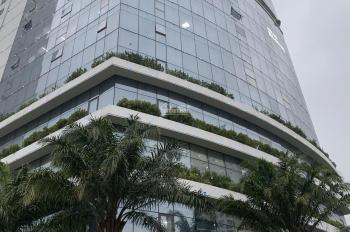 Cho thuê sàn văn phòng diện tích đa dạng từ 100 - 168 - 200 - 500m2 tại tòa nhà Ecolife - Tố Hữu