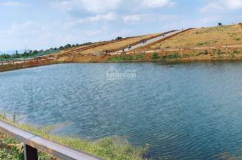 Đất nền Đam Bri, Bảo Lộc đang sốt, có sổ sẵn công chứng sang tên trong ngày