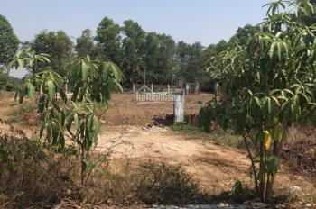 Bán lô đất Dự án Trại Nhím, P. Trường Thạnh, Q9, DT: 52m2, gía: TT 1.75 tỷ