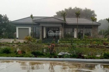 Siêu biệt thự nghỉ dưỡng tại Lương Sơn