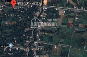 Đất vườn Trà Vinh - 5239m2 - Đường ô tô, mặt tiền 73m