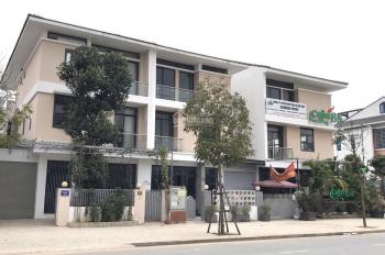 Bán Shop Villa An Phú Dương Nội rẻ như cho 43tr/m2 dt: 164m2, 171m2, giá 9 tỷ, lh: 0904615286