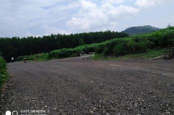 Bán đất thị trấn Phước Bửu, Xuyên Mộc, Bà Rịa Vũng Tàu hơn 900m2