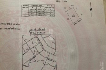 Đất mặt tiền đường nhựa 10m xà Châu Pha, Bà Rịa giá: 130 triệu/m ngang