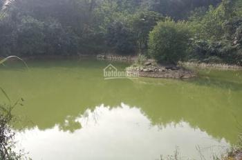 Cần bán 2.2ha, đất bên bờ phải sông Đà. Giá 1,5 tỷ