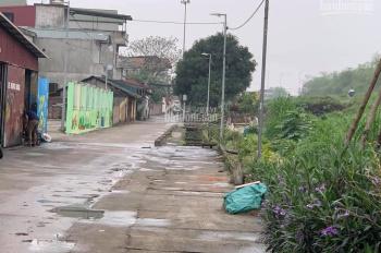 Bà chị cần tiền bán gấp mảnh đất 55m2 tại thôn vàng Cổ Bi, Gia Lâm, Hà Nội