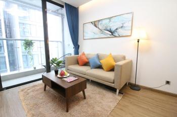 Chính chủ cho thuê căn hộ chung cư cao cấp Vinhomes Liễu Giai, 2 phòng giá 20 tr/th, 0968 956 086
