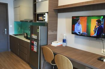 Chính chủ cho thuê căn hộ 1 phòng ngủ, khu vực trung tâm, giá hợp lý