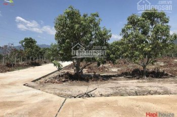 Bán nhanh đất 2 mặt tiền thôn Vĩnh Bình Cam Tân, 307.3m2 LH 0934125626