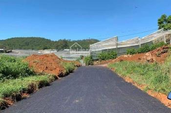 Bán gấp đất nền biệt thự view thoáng đường Vạn Thành, Đà Lạt 239m2, giá 4.6 tỷ - BĐS Đà Lạt 24h