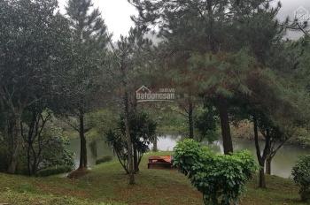 Bán khuôn viên biệt thự nhà vườn tuyệt đẹp tại Tiến Xuân, Thạch Thất, HN, DT: 10360m2
