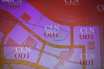 Bán đất khu vực thị trấn An Thới, quy hoạch đất ở giá đầu tư. LH: 0942237556