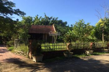Cần bán 2 căn đang cho thuê homestay mặt đường khu Family Resort, Yên Bài, Ba Vì. LH 0908866999