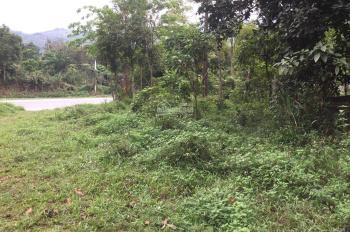 Bán ngay 7000m2 mặt đường Quốc lộ 6 đoạn Lâm Sơn, Lương Sơn, Hòa Bình