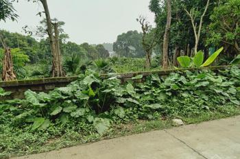 Cần chuyển nhượng lô đất 1830m2 đất làm biệt thự nhà vườn nghỉ dưỡng, vị trí đắc địa tại Cư Yên