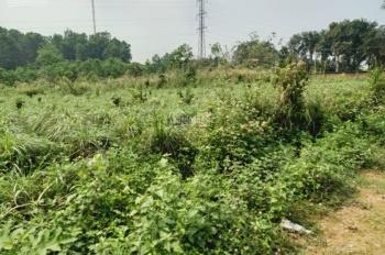 Bán nhanh lô đất 2100m2 đất làm nhà vườn nghỉ dưỡng giá hấp dẫn tại Hòa Sơn, Lương Sơn, Hòa Bình