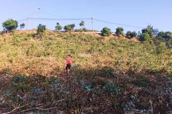 Bán chính chủ 1250m2 đất ở nông thôn mặt tiền 50m Quốc Lộ 20 - ngay đồi chè Cầu Đất Farm