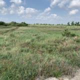 Tôi chính chủ cần bán 1000m2 đất tại Nhơn Trạch