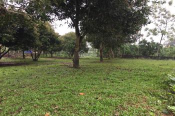 Cần bán 1800m2 đất, view cao thoáng, tường bao kiên cố tại Yên Bài, Ba Vì, HN