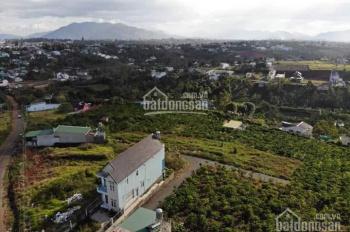 Bán đất nền biệt thự, P2, Tp Bảo Lộc. 0937508298