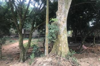 Bán đất và nhà tại Vân Hoà, giá 1,2 triệu/m2