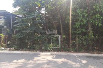 Mặt tiền đường An Sơn 01 tách 3 lô ok nha. (Mình chuyên đất vườn An Sơn giá từ 3 triệu/m2 trở lên)