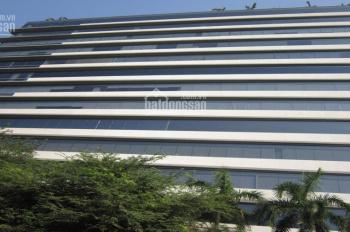 Cho thuê văn phòng Tân Bình từ 180 ng/m2/th, 20m2 - 2000m2 LH: 0901.44.6878 (Zalo, Viber)