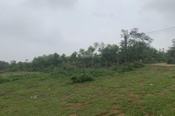 Bán đất 3600m2, tại khu du lịch Suối Ngọc Vua Bà, Tiến Xuân, Thạch Thất giá: 1,7 triệu/m2