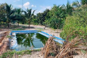 Bán trang trại vườn - ao - chuồng - có sẵn nhà cấp 4, bán giá cực rẻ để chuyển công tác