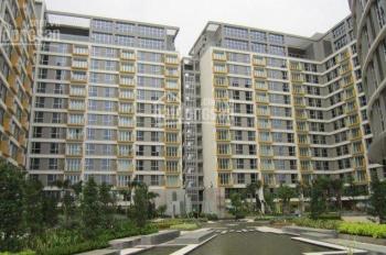 Quản lý tất cả giỏ hàng cho thuê 1-2-3PN Saigon Airport Plaza. Hotline PKD 0909 255 622