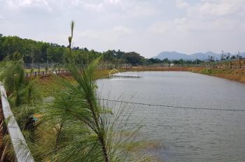Bán đất view đồi chè gần trung tâm Bảo Lộc