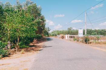 Bán đất Láng Dài, Huyện Đất Đỏ, giá 1,2 triệu/m2. sinh lợi cao