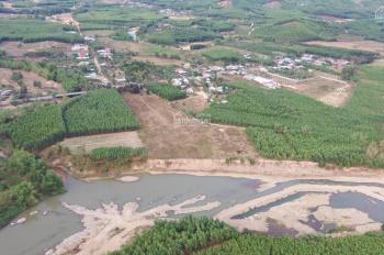 Bán đất rẫy tại Khánh Đông cách Tỉnh Lộ 8 chỉ 100m chỉ với 600 triệu. LH: 0917368345