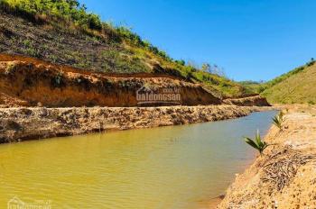 Trang trại sinh thái Lâm Nguyên tại Lâm Đồng chỉ từ 600tr, hưởng lợi nhuận đến 68%, LH: 0906 947978