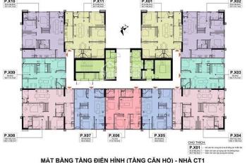 Cập nhật những căn chung cư A10 cuối cùng chủ nhà bán lại giá rẻ chỉ từ 24 triệu/m2