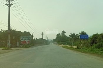 Đất nghỉ dưỡng Yên Bài - Ba Vì, view cánh đồng, sát đường Hồ Chí Minh... 0981824289
