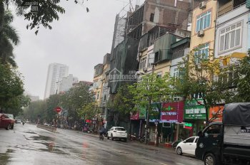 Bán nhà mặt phố Trần Quốc Hoàn, 101m2, mặt tiền 8m, giá 44 tỷ