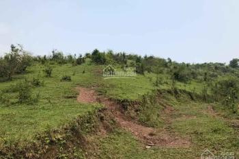 Chuyển nhượng 4.8ha đất trang trại tại Cao Răm, Lương Sơn, giá rẻ
