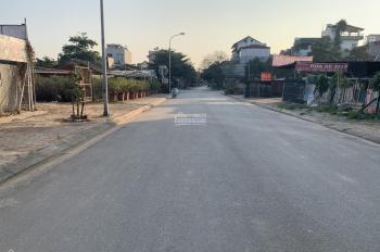 Bán đất biệt thự 112m2 tại 31ha Trâu Quỳ, Gia Lâm