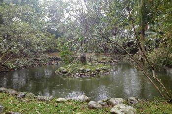 Nhượng lại khuôn viên nghỉ dưỡng 10000m (1ha) tại Tiến Xuân, Thạch Thất, Hà Nội