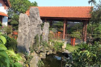 Cho thuê biệt thự homestay 3000m2 (sân + vườn + ao) gần biển theo ngày hoặc tháng. LH 0379789999