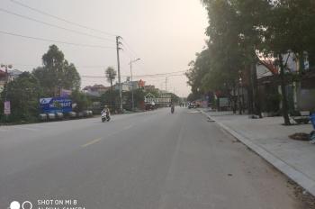 Bán lô đất nền nằm trên trục đường Quốc Lộ 1A, huyện Việt Yên tỉnh Bắc Giang