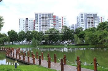 Cho thuê căn hộ cao cấp Caledon City 1PN, 2PN, 3PN giá tốt