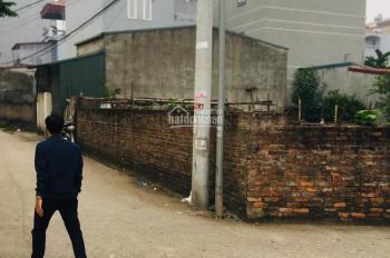 Chính chủ cần bán mảnh đất sổ đỏ 46,8m2 tại Đức Thượng, Hoài Đức
