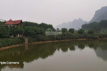 Bán gấp 13ha đất thổ cư và đất vườn đẹp nhất nhì Lương Sơn, HB