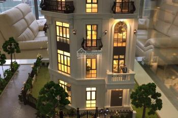 Chính chủ cần chuyển nhượng gấp quỹ căn liền kề, biệt thự song lập thuộc dự án Elegant Park Villa