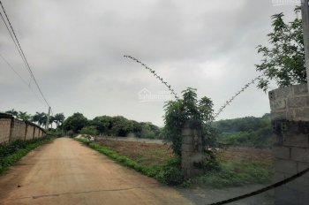 Bán gấp 2600m2 đất thổ cư tại huyện Lương Sơn, Hoà Bình, phù hợp nghỉ dưỡng homestay