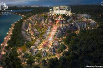 Tôi bán nhà biệt thự VIP Monaco Hạ Long 750m2 trung tâm Bãi Cháy view Vịnh Hạ Long 081.434.3333