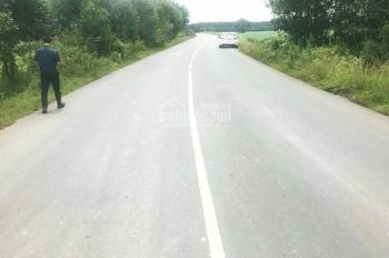 Bán 19000m2 đất 2 mặt tiền đường Xuân Bắc - Suối Cao, xã Xuân Thành, huyện Xuân Lộc, tỉnh Đồng Nai