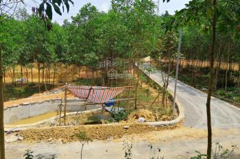 Bán Homestay (nghỉ dưỡng hoặc trang trại) đang xây dựng 60% ở Hoà Ninh - Hoà Vang cách phố 15km